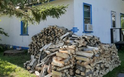 How Much Wood…